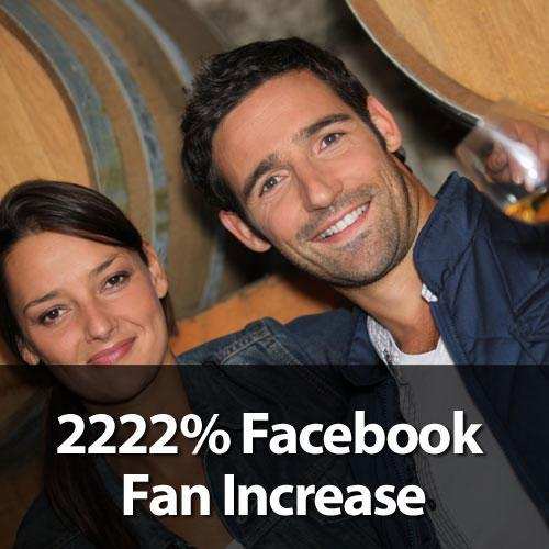Travel Tourism Social Media Marketing Case Study Facebook