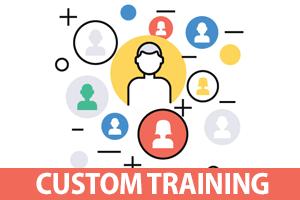 custom online training
